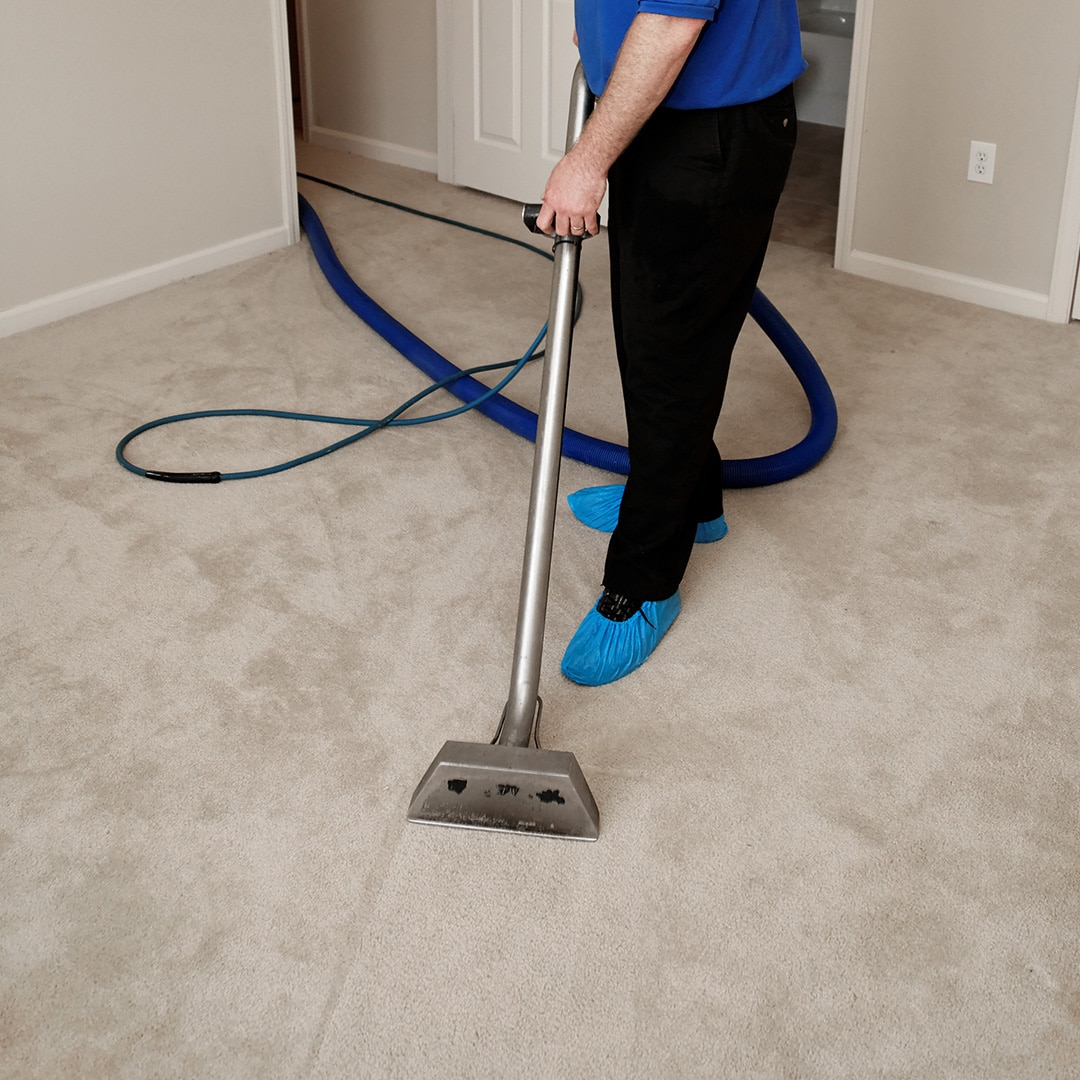 steam cleaning carpets in Nottingham